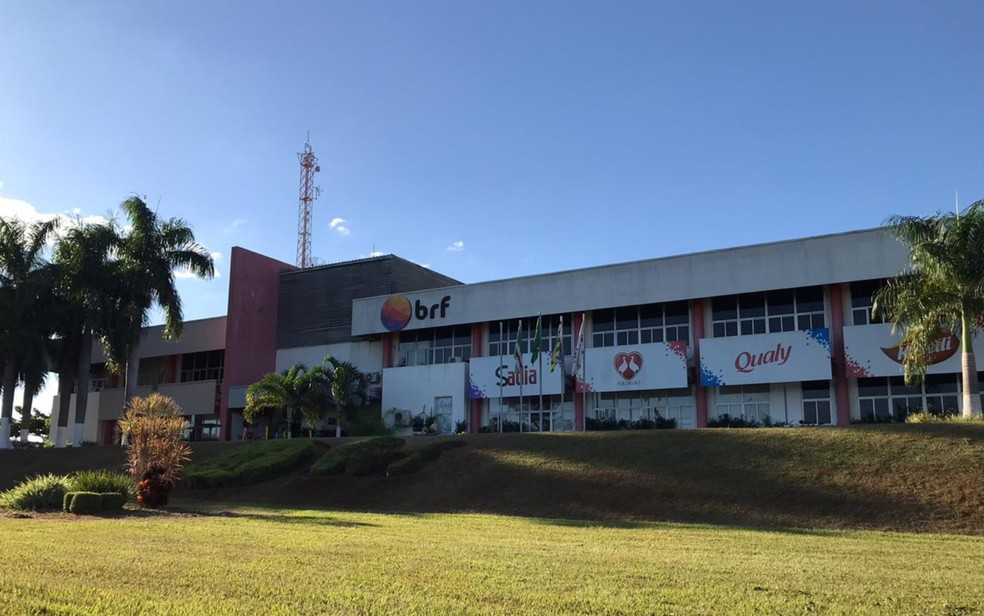 BRF em Rio Verde, Goiás — Foto: Arildo Palermo/TV Anhanguera