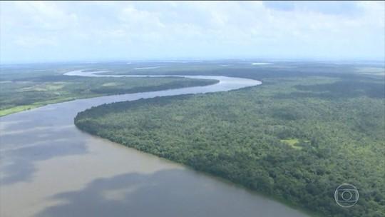 Governo revoga decreto que extinguia reserva na Amazônia