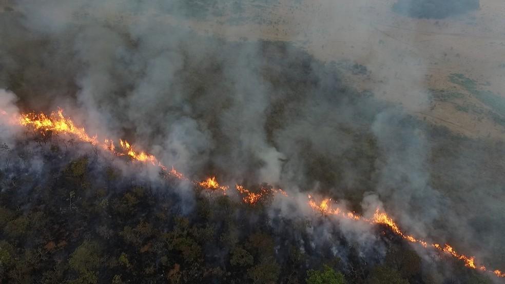 Área do parque estadual das Nascentes do Taquari também foi atingida pelo incêndio em Costa Rica, MS (Foto: Reprodução/G1 MS)