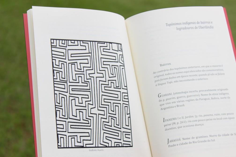 """O livro """"Toponímia Tupi da região de Uberlândia"""" foi disponibilizado gratuitamente es escolas de Uberlândia (Foto: Daniel Pompeu/Divulgação)"""