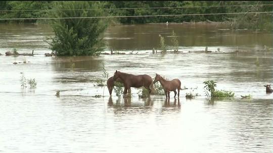 Prefeitura de Registro cancela festa de Réveillon por conta das fortes chuvas