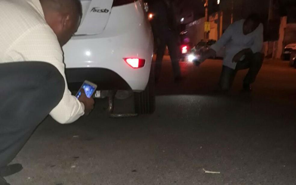Sucuri foi achada embaixo de carro em Salvador (Foto: Divulgação/SSP)