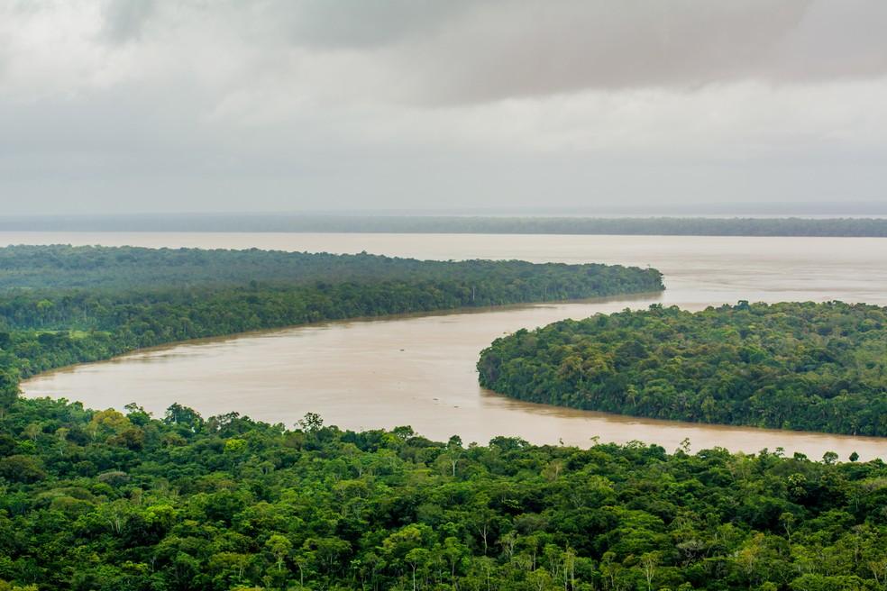A Amazônia vai estar em debate durante a semana de meio ambiente on-line promovida pela Sema — Foto: Maksuel Martins/Secom