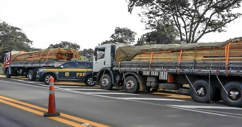 PRF apreende mais de 100 metros cúbicos de madeira no sudeste do Pará - Notícias - Plantão Diário