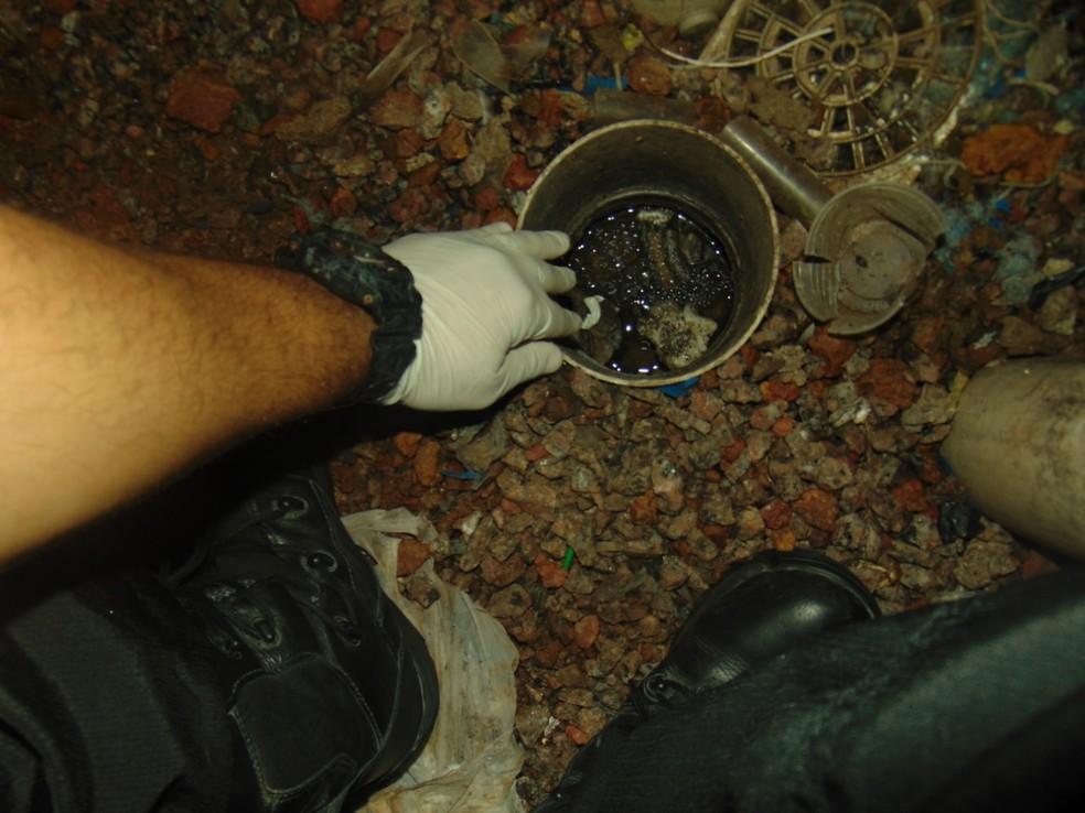 Objetivo era não levantar suspeitas sobre o plano dentro da Penitenciária de Porto Velho.  — Foto: Divulgação/Penitenciária Federal de Porto Velho