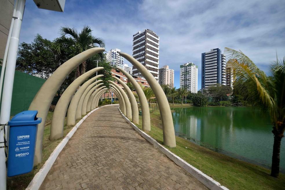 Parques municipais passam a abrir aos domingos — Foto: Jefferson Peixoto/Secom