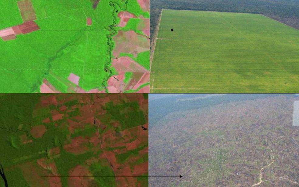 Reprodução de imagem do site do Inpe mostra como a imagem aparece no satélite (à esquerda) e como ela é na realidade. — Foto: Reprodução/Inpe