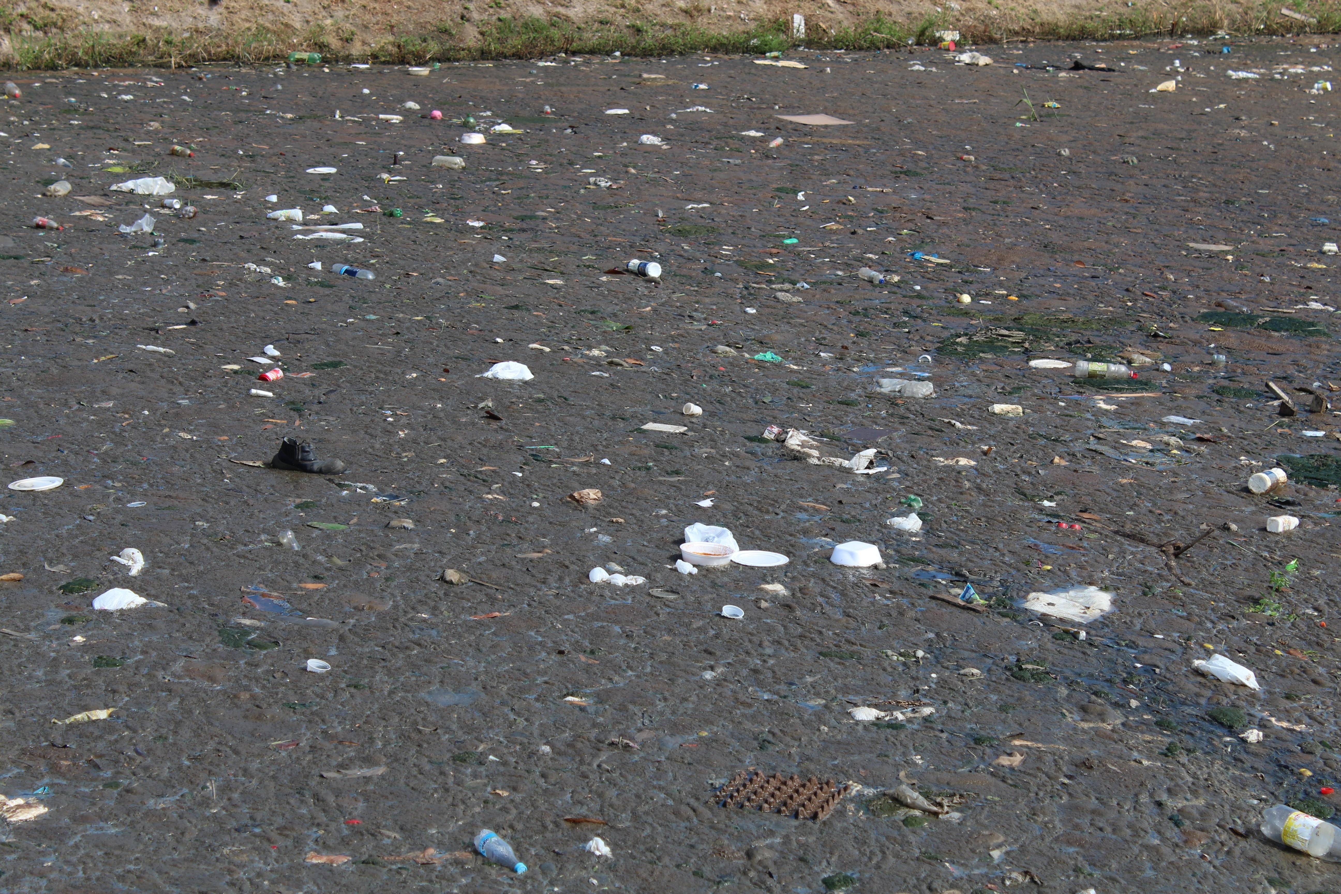 Estudantes aprendem a importância de manter igarapés limpos com o Projeto Ambiental do Ampa - Notícias - Plantão Diário