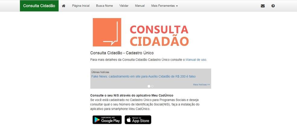 Página da Consulta Cidadão — Foto: Reprodução do Ministério do Desenvolvimento Social (MDS)
