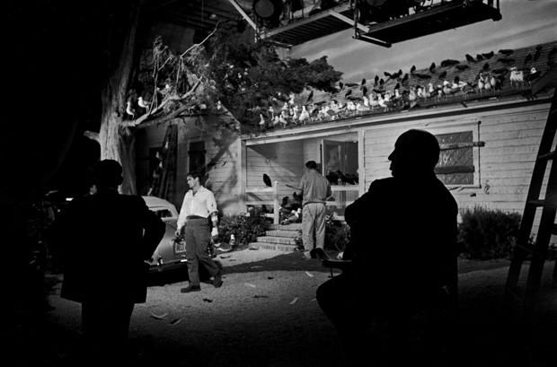 Alfred Hitchcock ganha megaexposição no MIS, em São Paulo (Foto: Divulgação)