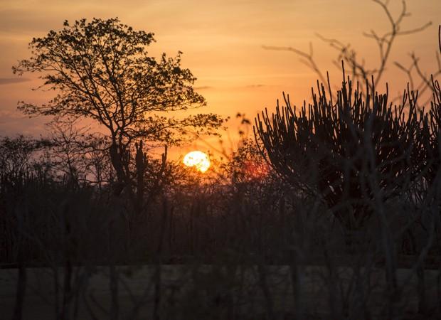 Pôr do sol no semi árido da Paraíba (Foto: Estevan Avellar/TV Globo)