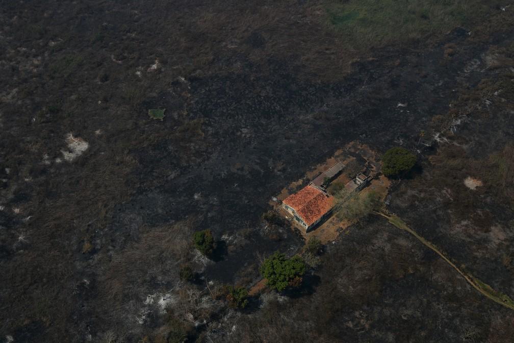 Foto érea mostra uma casa cercada por vegetação queimada em Poconé (MT), no Pantanal — Foto: Amanda Perobelli/Reuters