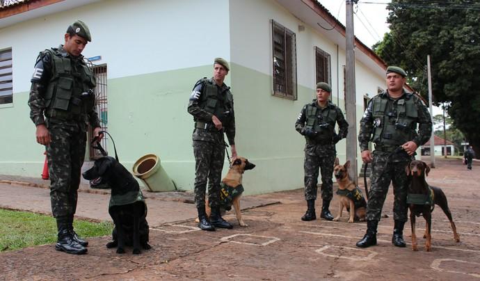 Cães farejadores vão ajudar as forças de segurança durante a Copa do Mundo (Foto: Hélder Rafael)
