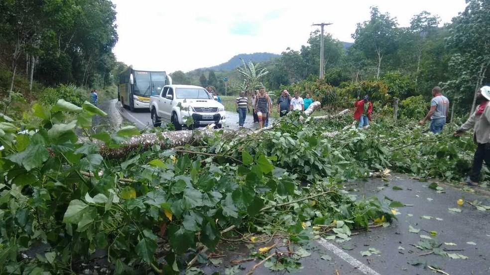Caso ocorreu durante a tarde desta segunda-feira (13) (Foto: Erlon Santos/Arquivo Pessoal)