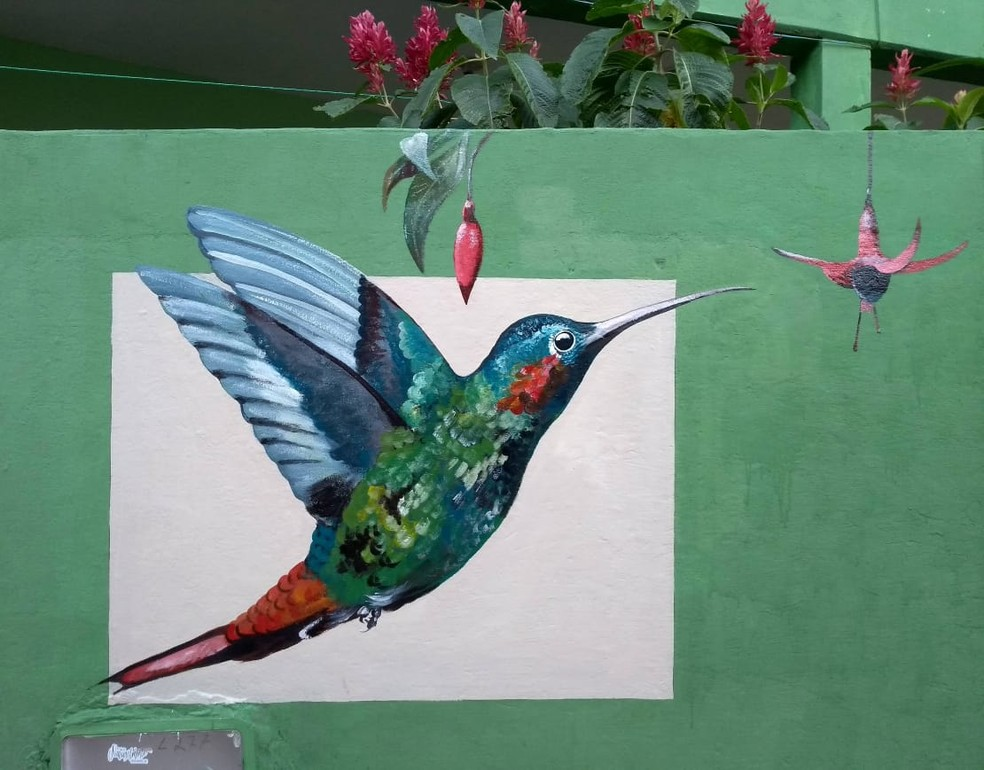 Para ilustrar a biologia dos animais o artista estuda estruturas, cores e hábitos das espécies — Foto: Miguel de Paula/Acervo Pessoal