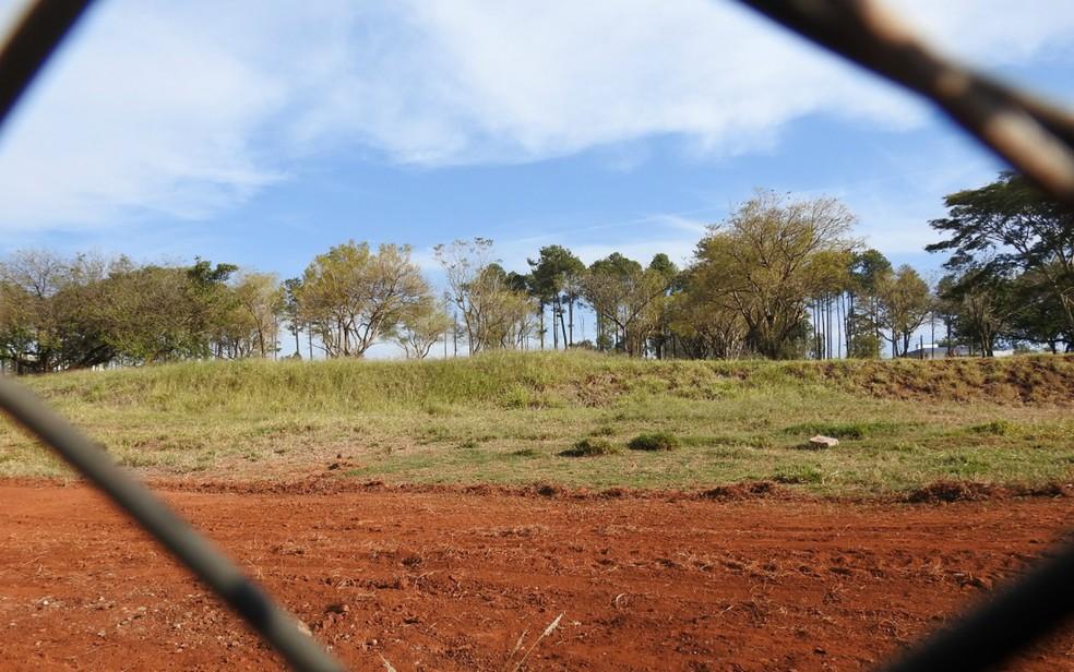 Terreno no campus da USP abrigará segundo Bom Prato de Ribeirão Preto — Foto: Leonardo Santos/A Cidade On Ribeirão