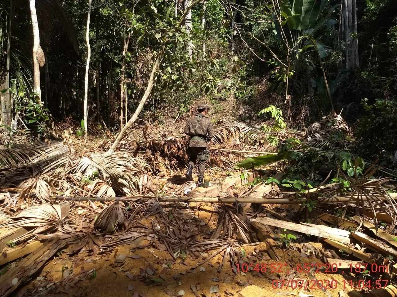 Operação contra grilagem de terra é realizada em reserva de RO; famílias relatam ameaças