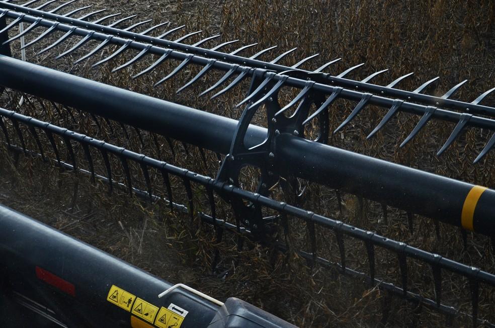 A plataforma dessa colheitadeira tem quase 12 metros  — Foto: André Schaun