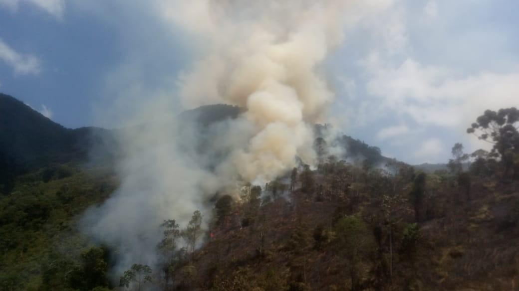 Incêndio atinge Parque Estadual da Pedra Selada, em Resende - Notícias - Plantão Diário