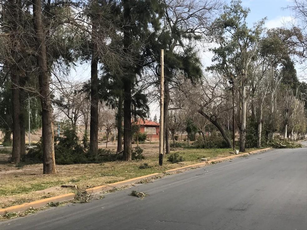 Galhos de árvores derrubados pela força do vento em Mendoza, cidade onde o Palmeiras enfrenta o Godoy Cruz nesta terça — Foto: Felipe Zito