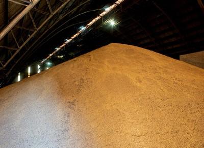 Dossiê Caminhos da Safra - Armazém cheio de soja em grão (Foto: Fernando Martinho )