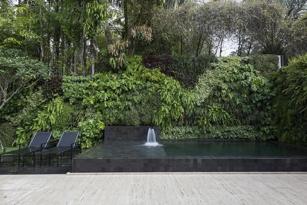Um jardim contemplativo com espécies tropicais (Foto: divulgação)