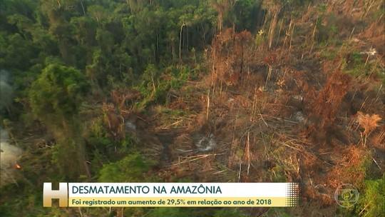 Desmatamento na Amazônia cresce quase 30% entre agosto de 2018 e julho de 2019, diz Inpe