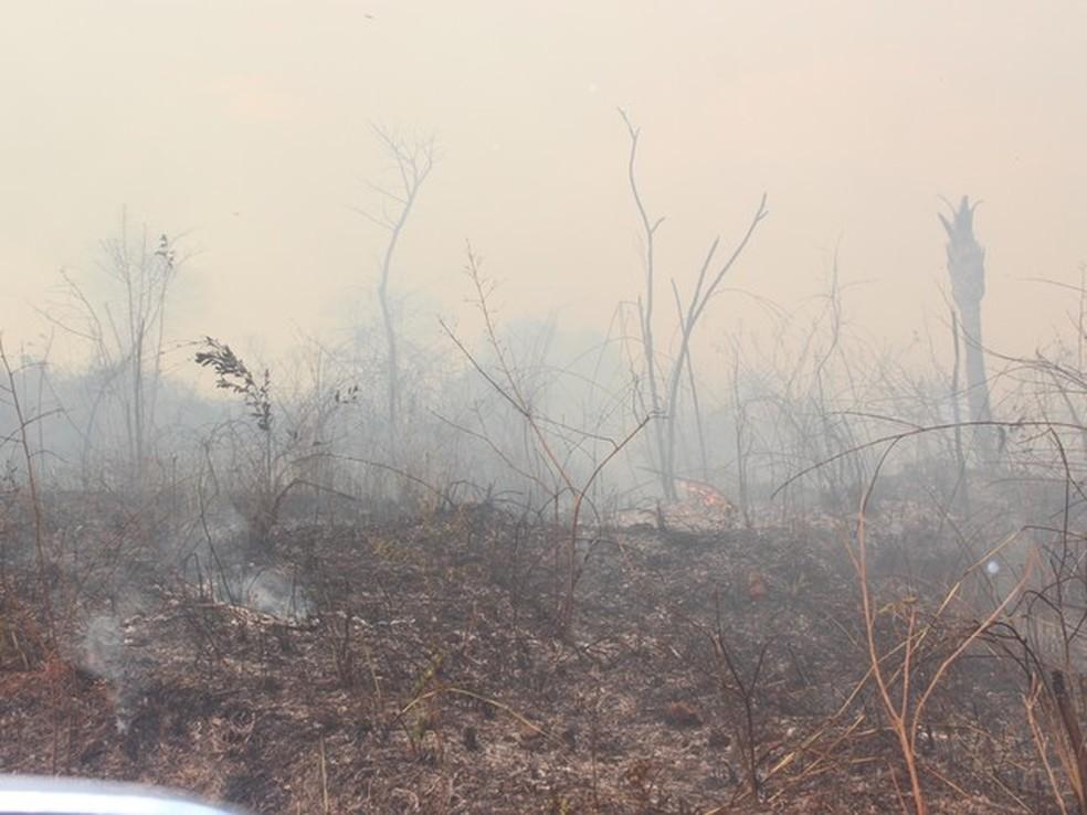 Prática de queimadas, comum no interior do Ceará, agrava ainda mais o problema da desertificação (Foto: Ellyo Teixeira / G1)