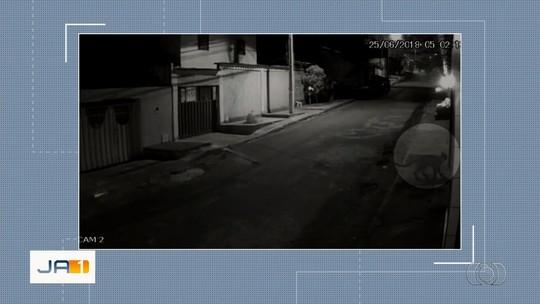 Novo vídeo mostra onça forçando portão para tentar entrar em casa de Valparaíso de Goiás