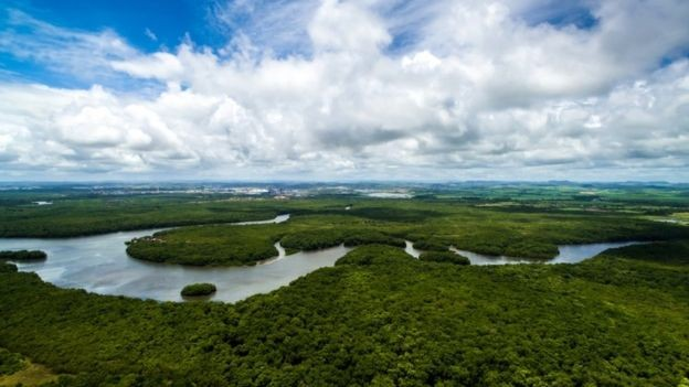 A Floresta Amazônica é questão central no debate ecológico internacional (Foto: GETTY IMAGES)