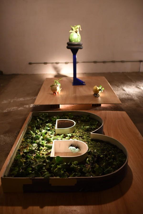 Laces paralisa obras por 24h e vira espaço de ocupação artística em BH (Foto: @lecanovo)