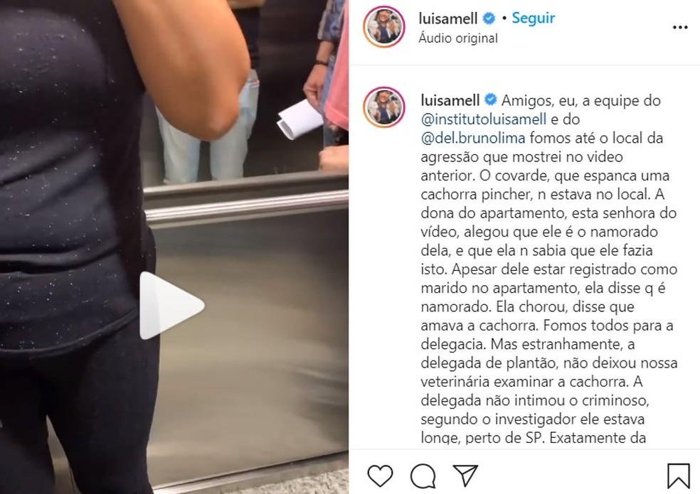 Ativista dos animais Luisa Mell se manifestou sobre as agressões em Americana — Foto: Reprodução/Instagram