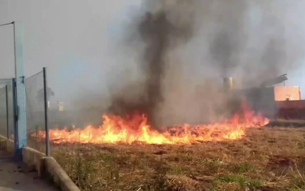 Lote pega fogo em Goiânia (Foto: Reprodução/TV Anhanguera)
