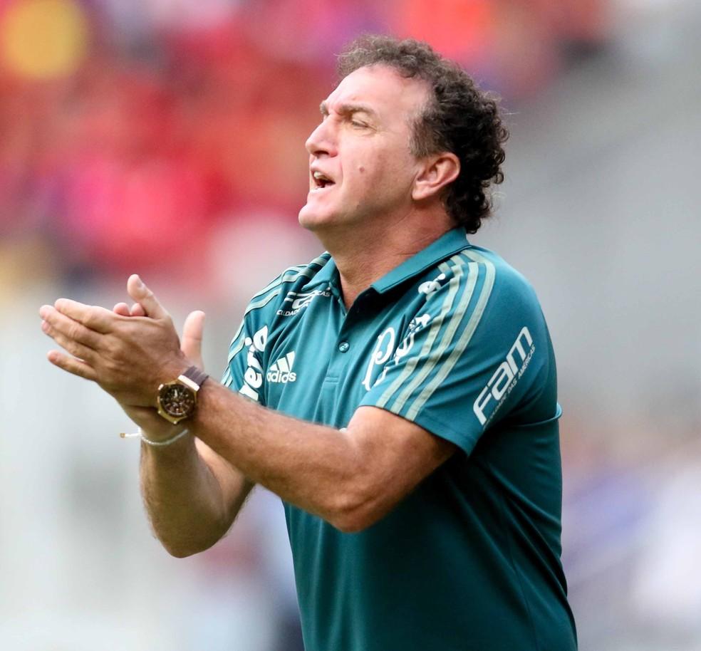 Cuca tem um quebra-cabeça para montar o Palmeiras para a Copa do Brasil (Foto: Aldo Carneiro / Pernambuco Press)