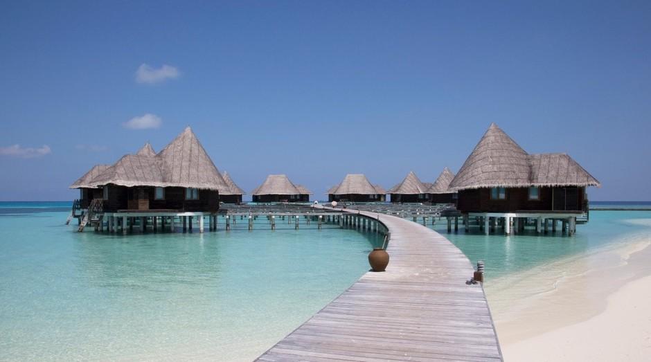 Resort de luxo nas Maldivas procura estagiário para ajudar a resgatar tartarugas
