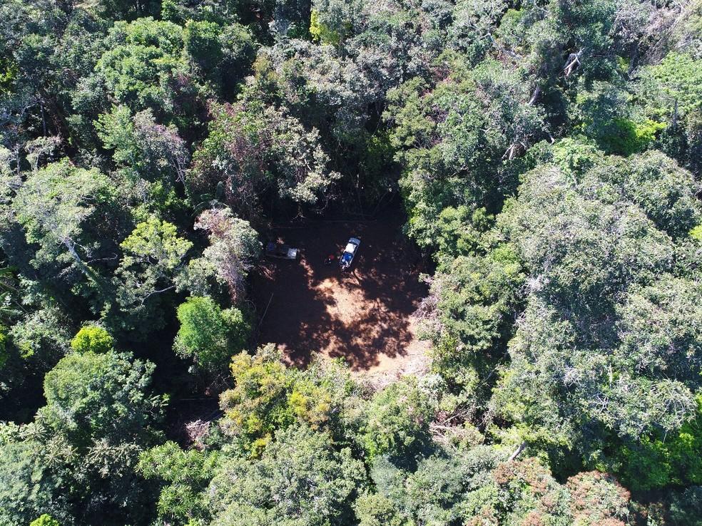 Imagem aérea de um drone na Amazônia  — Foto: Mario Fraga/ Arquivo pessoal