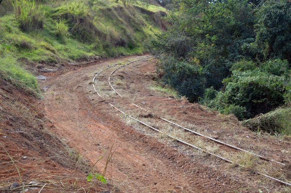 Mato tomba conta de linhas férreas abandonadas em Varginha — Foto: Lucas Soares / G1