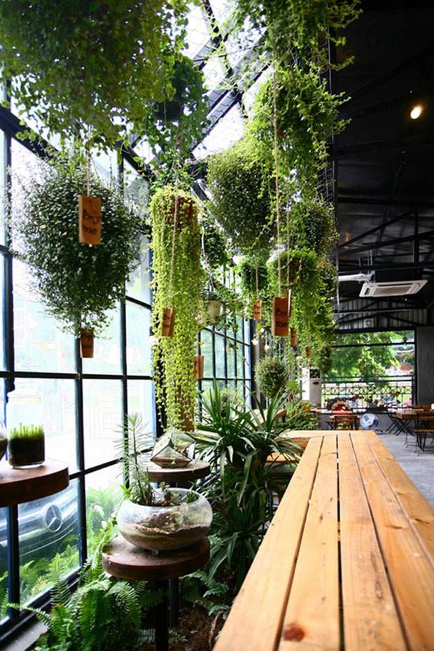 9 ideias para criar seu próprio jardim de inverno (Foto: Reprodução/Divulgação)