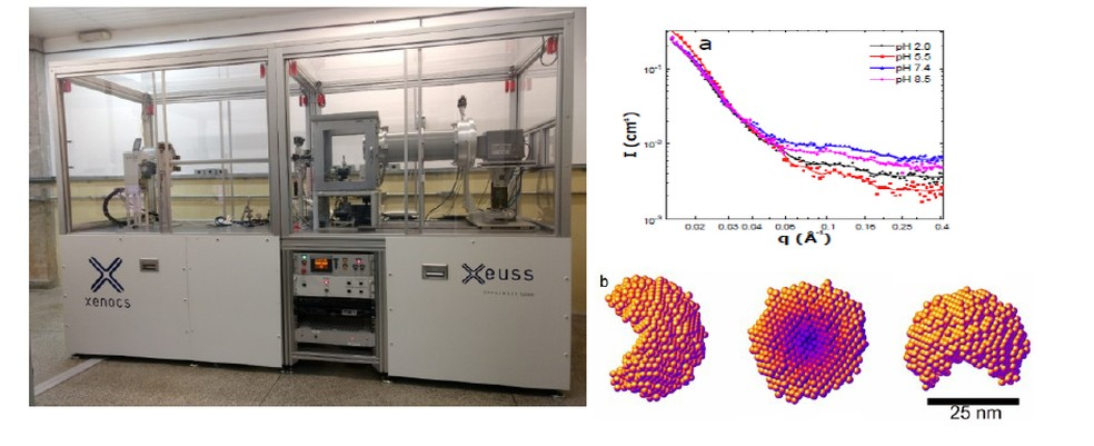 Esquerda: Equipamento de espalhamento de raios X a baixo ângulo (SAXS-Xeuss)-GFCx-FEP. Direita: (a) Dados de SAXS obtidos no equipamento do IFUSP, (b) modelo em baixa resolução para o antígeno de Hepatite B (HbsAg), obtido pelos dados de SAXS. — Foto: Instituto de Física da USP