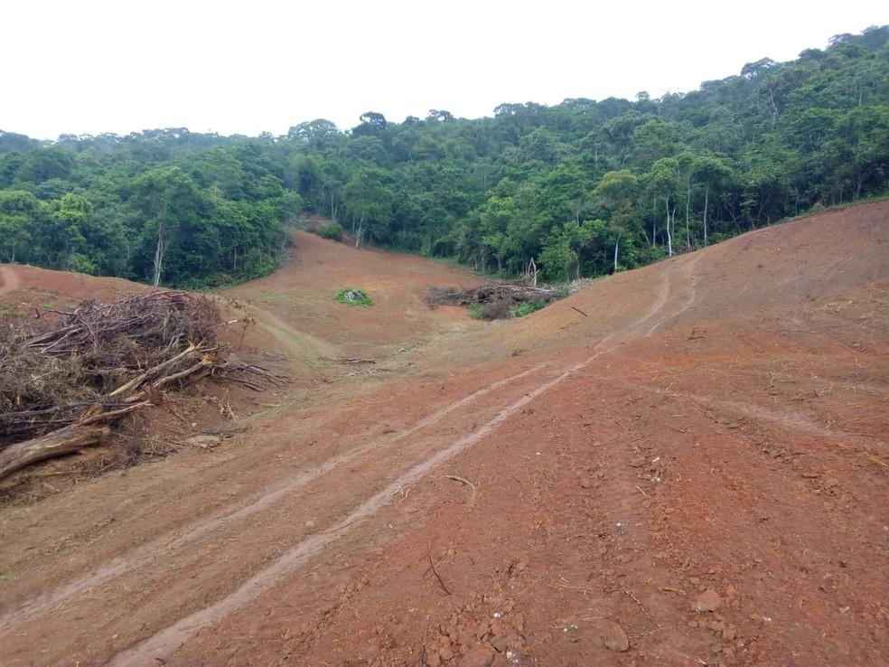 Área de 50 mil metros quadrados foi encontrada desmatada em Macuco, no RJ — Foto: Divulgação/3ª UPAm