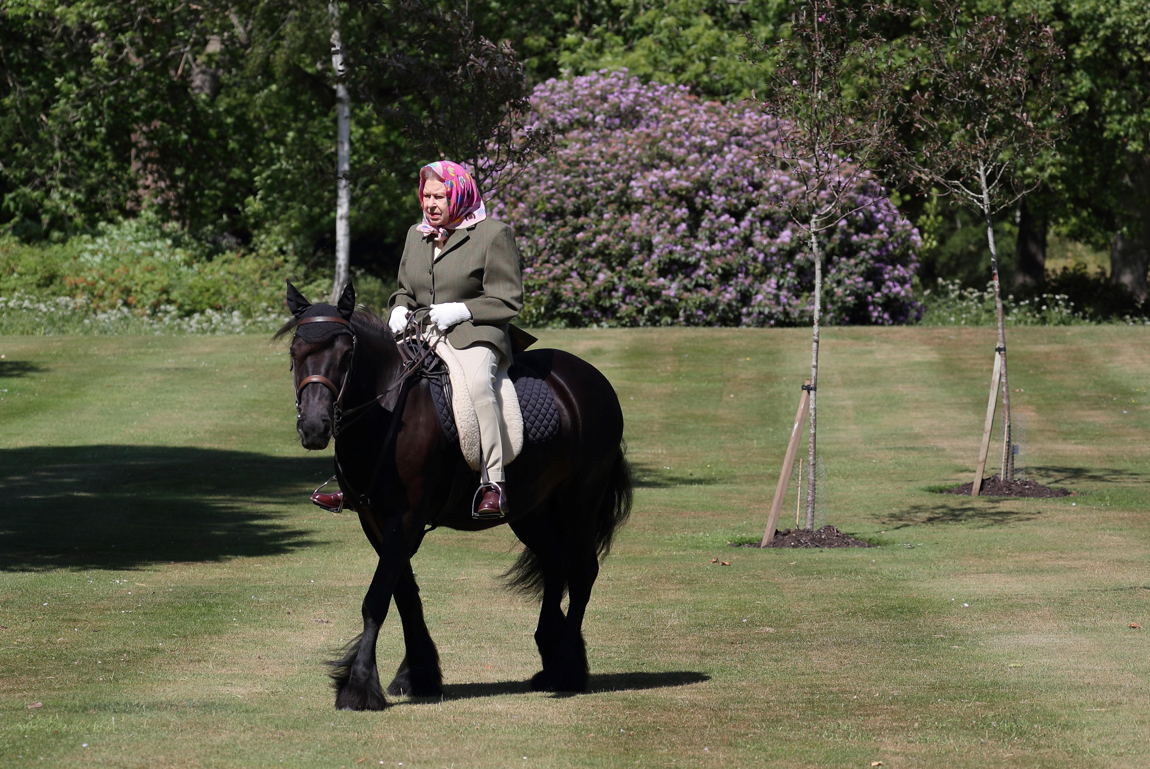 Elizabeth II anda de pônei após flexibilização de isolamento no Reino Unido