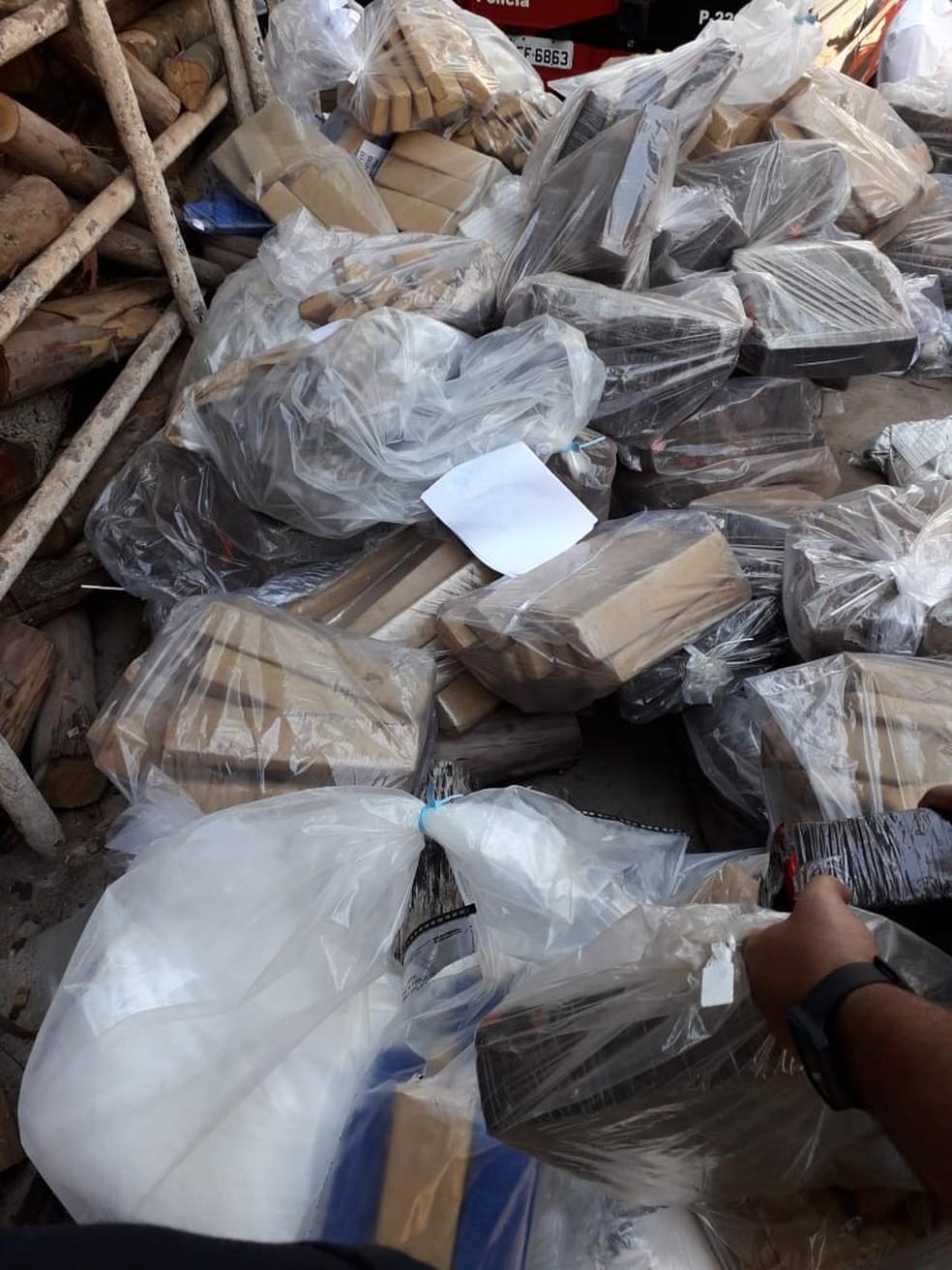 Drogas foram apreendidas nos últimos seis meses na região de Rio Preto — Foto: Divulgação/Polícia Civil