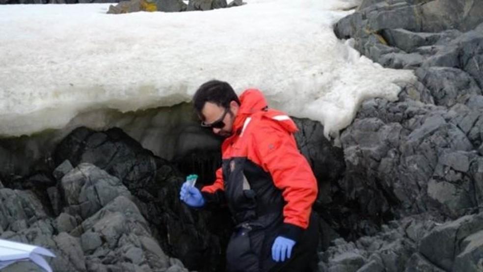 Silva pesquisou em região inóspita com espécies que só existem na Antártida e onda há pouca influência humana ? Foto: LEONARDO JOSÉ SILVA/DIVULGAÇÃO/BBC
