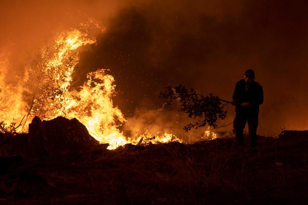 Um homem usa um galho de árvore para tentar diminuir um incêndio na aldeia de Pefki, na ilha de Evia, Grécia, em 8 de agosto de 2021. — Foto: REUTERS/Nikolas Economou