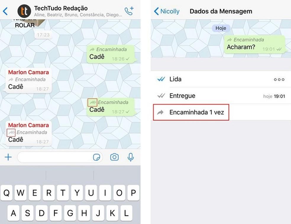 5 Seta dupla indica mensagens encaminhadas mais de cinco vezes  — Foto: Reprodução/TechTudo