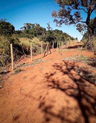 Ecovias instala cercas de proteção na BR-365 no Triângulo Mineiro