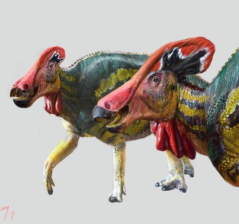 """Novo dinossauro """"falante"""" de 73 milhões de anos é descoberto no México"""