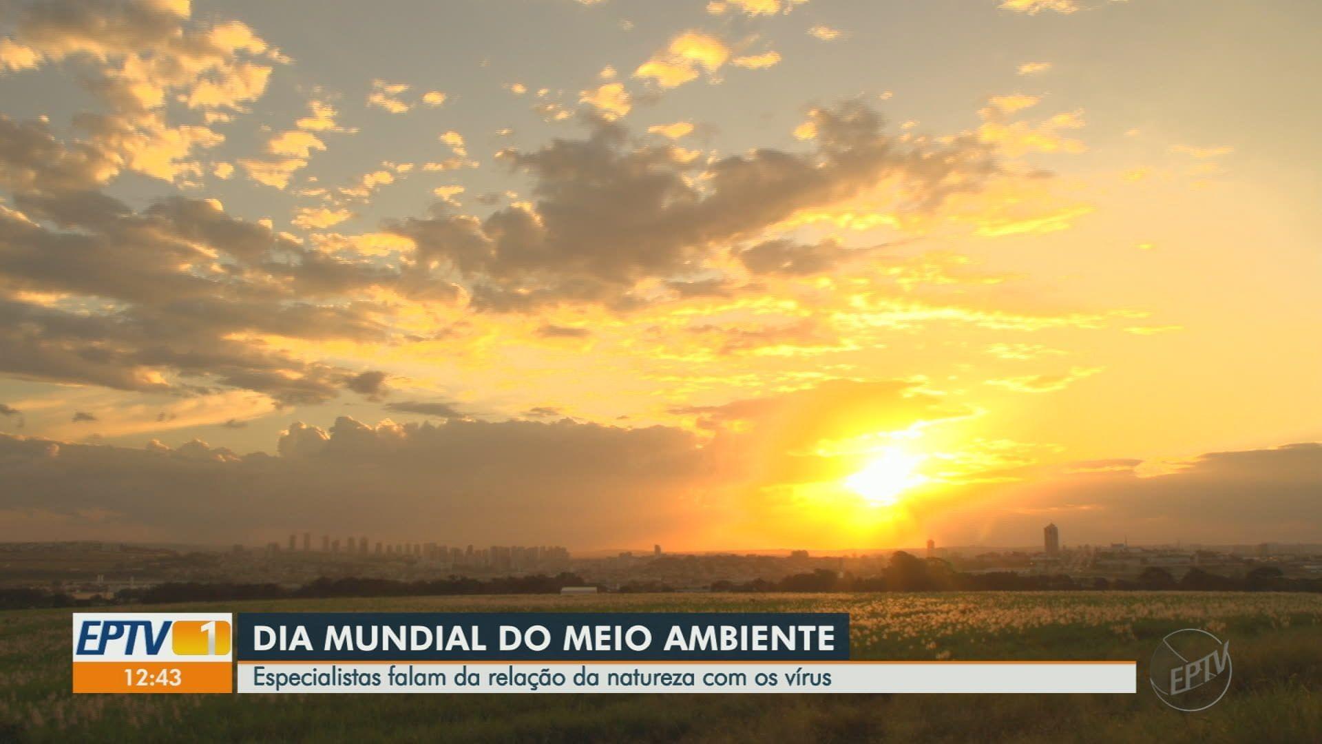 VÍDEOS: EPTV1 Ribeirão Preto de sexta-feira, 5 de junho de 2020