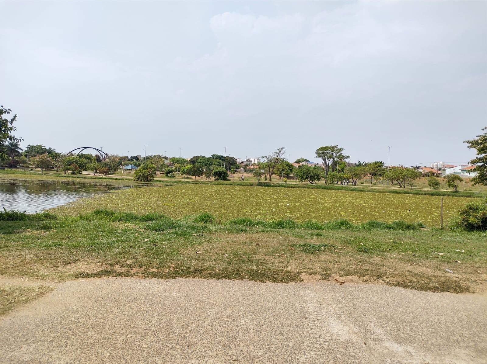 Algas cobrem lago no Parque das Águas em Sorocaba
