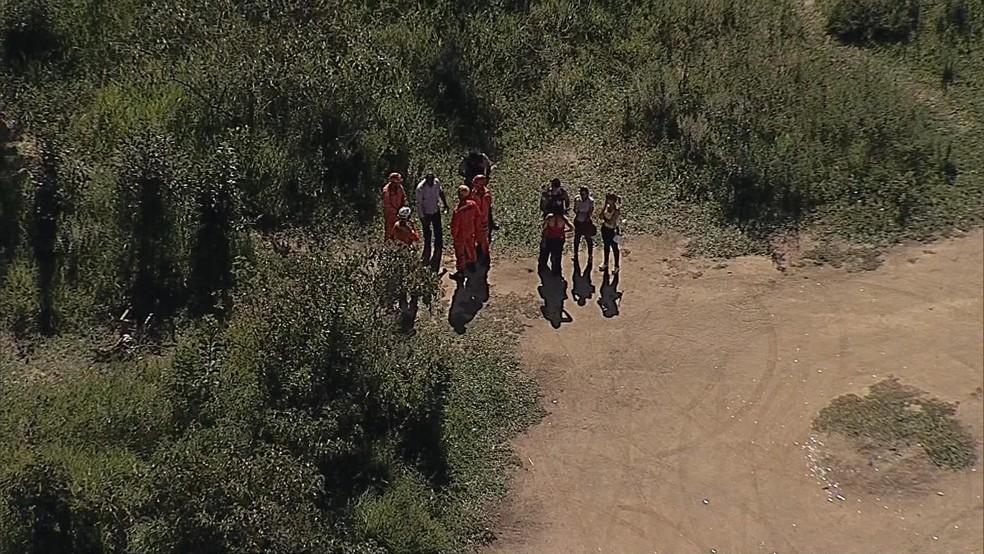 Bombeiros fazem buscas por criança em mata de Betim (Foto: Reprodução/TV Globo)